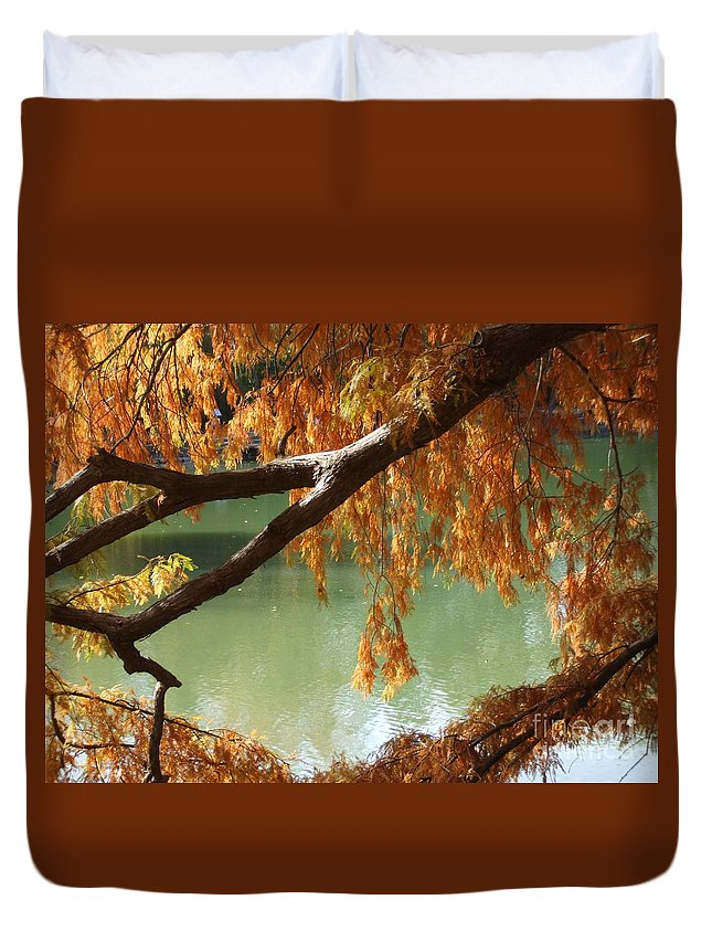 Fall Duvet Cover featuring the photograph Colorful Fall Bald Cypress by Robert D Brozek