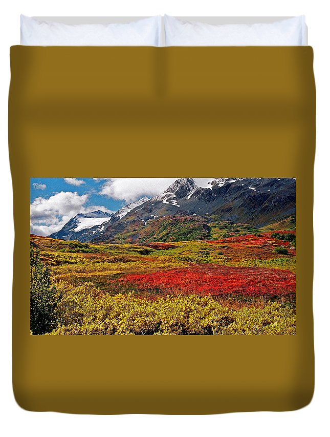 Alaska Duvet Cover featuring the photograph Colorful Land - Alaska by Juergen Weiss
