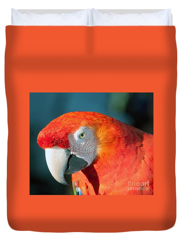 Psittacidae Duvet Cover featuring the photograph Colorful Parrot by Gunter Nezhoda
