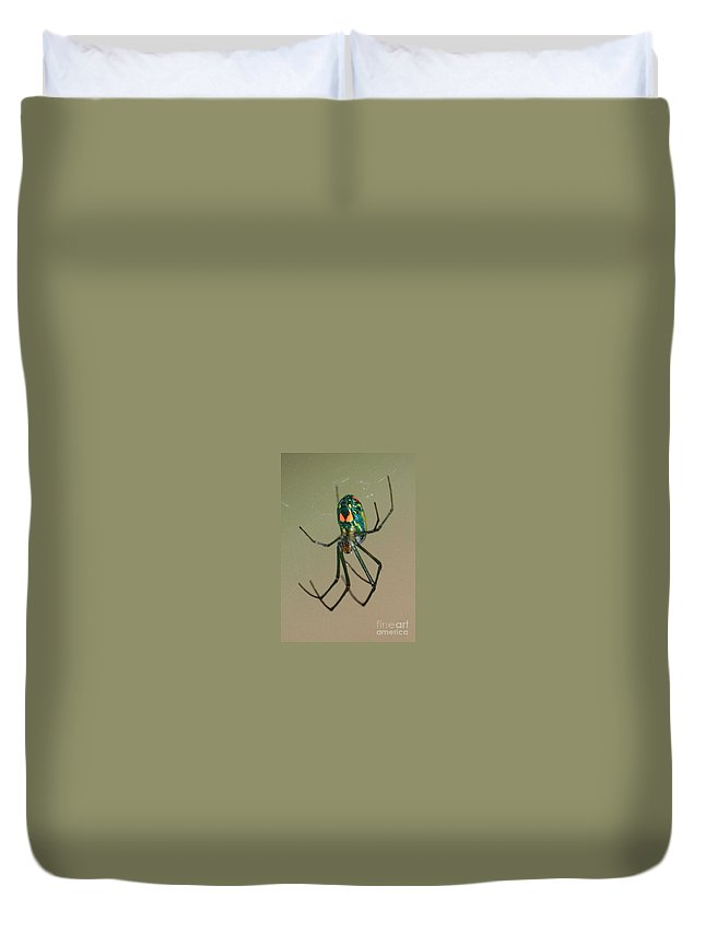 Spider Duvet Cover featuring the photograph Colorful Spider In The Swamp by Carol Groenen