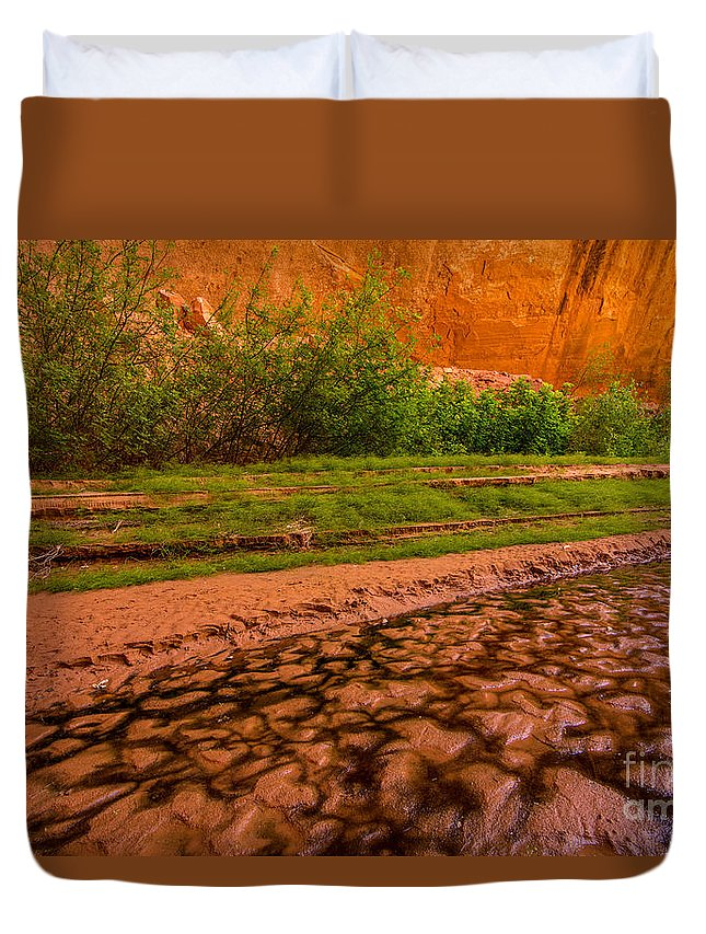 Colorful Duvet Cover featuring the photograph Colorful Streambed - Coyote Gulch - Utah by Gary Whitton