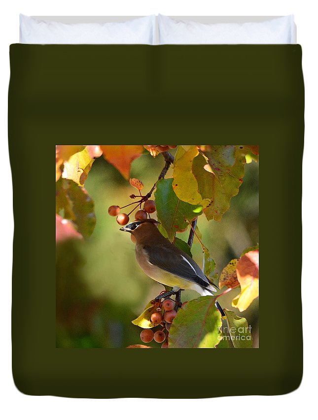 Nature Duvet Cover featuring the photograph Waxwing In Fall Colors by Nava Thompson