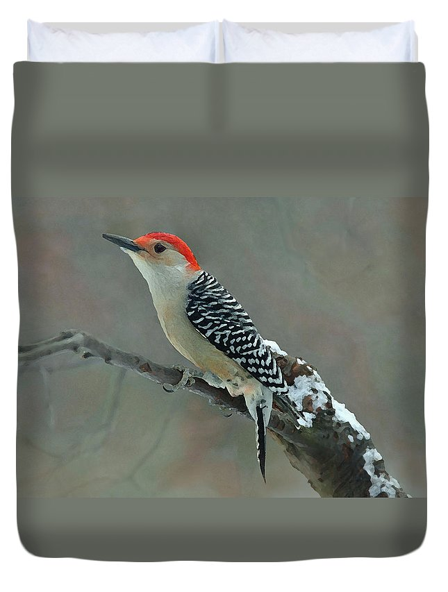 Woodpecker Duvet Cover featuring the photograph Colors Of Winter by Robert DeFosses