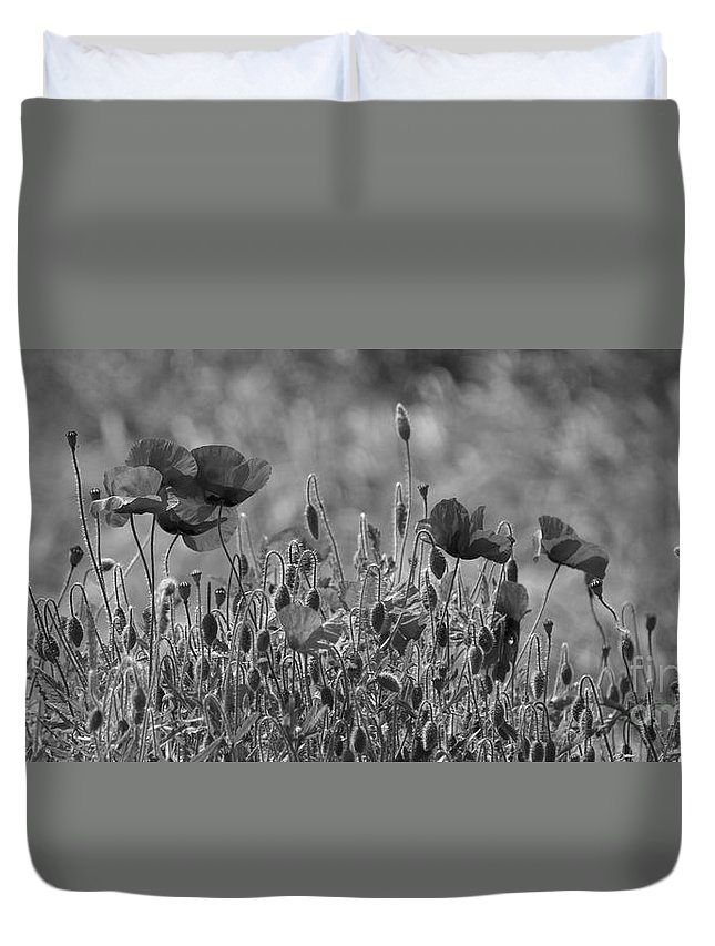 Poppies Duvet Cover featuring the photograph Colour Blind Poppies 2 by Carol Lynch
