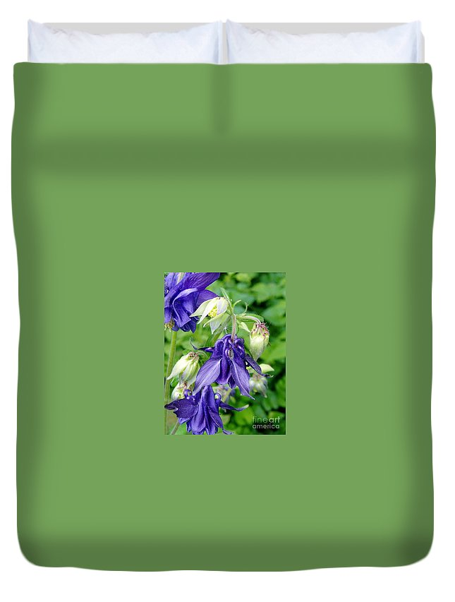 Duvet Cover featuring the photograph Columbine Illuminiated Lantern by Renee Croushore
