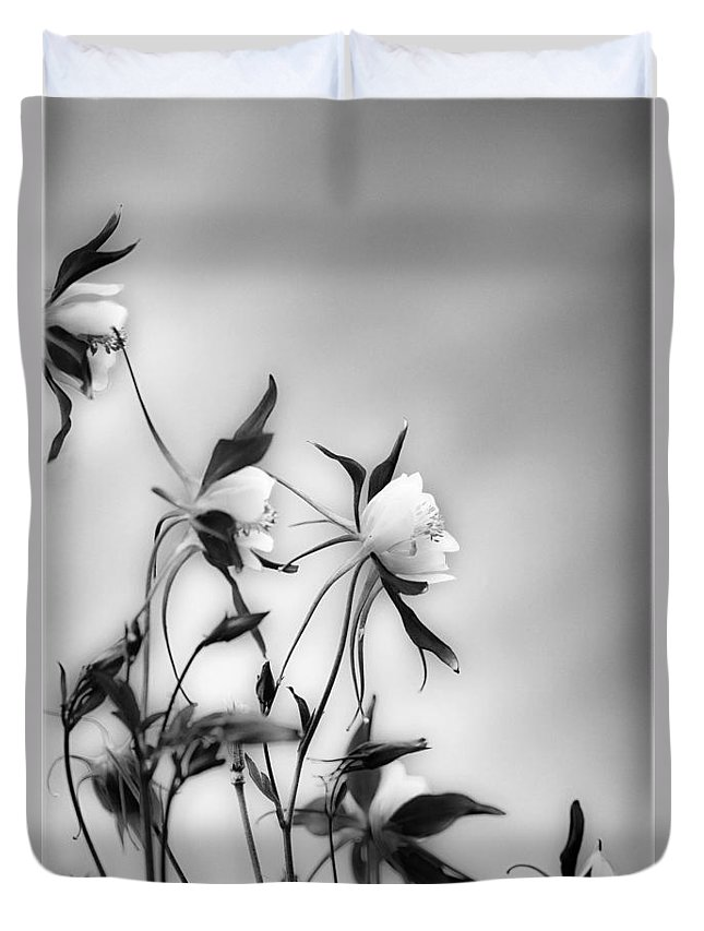 Blossom Duvet Cover featuring the photograph Columbines In Black And White by Peter v Quenter