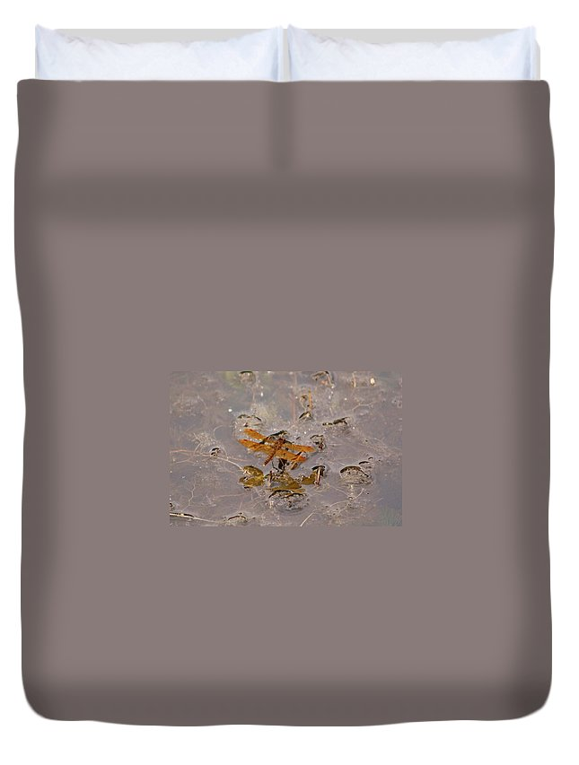 Belmont Lake State Park Duvet Cover featuring the photograph Coming In For A Landing by Karen Silvestri