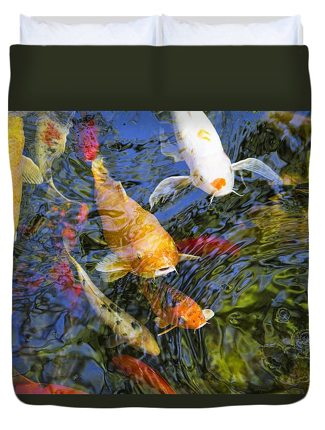 Cyprinus Carpio Haematopterus Duvet Cover featuring the photograph Coming Up Koi by Kathy Clark