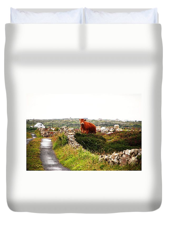 Red Duvet Cover featuring the photograph Connemara Cow by Charlie and Norma Brock