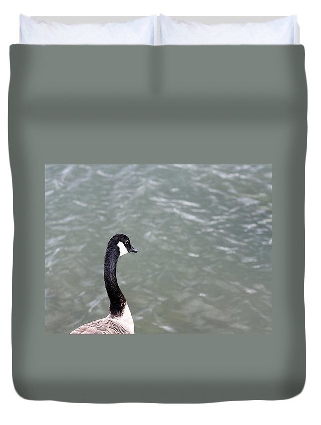 Canadian Goose Duvet Cover featuring the photograph Canadian Goose Contemplating A Swim by Gothicrow Images
