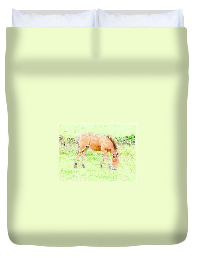 Young Foal Exmoor Pony Somerset Grazing Duvet Cover featuring the painting Content by Vix Edwards