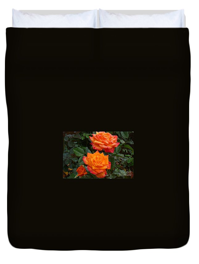 Roses Duvet Cover featuring the photograph Family Of Three by Mary Brhel