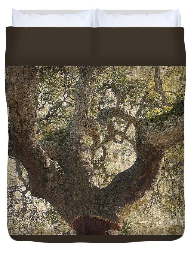 Cork Oak Duvet Cover featuring the photograph Cork Oak Tree by Heiko Koehrer-Wagner