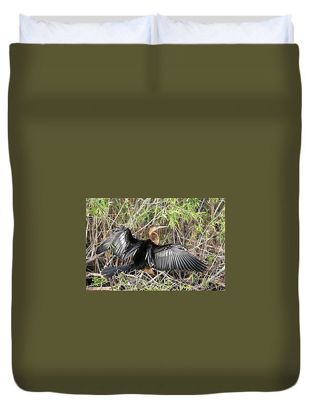 Cormorant Duvet Cover featuring the photograph Cormorant Wingspan by Ian Mcadie