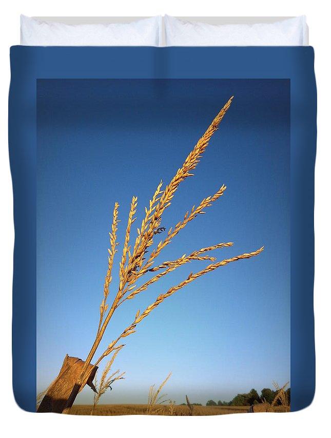 Joseph Skompski Duvet Cover featuring the photograph Corn Tassel by Joseph Skompski