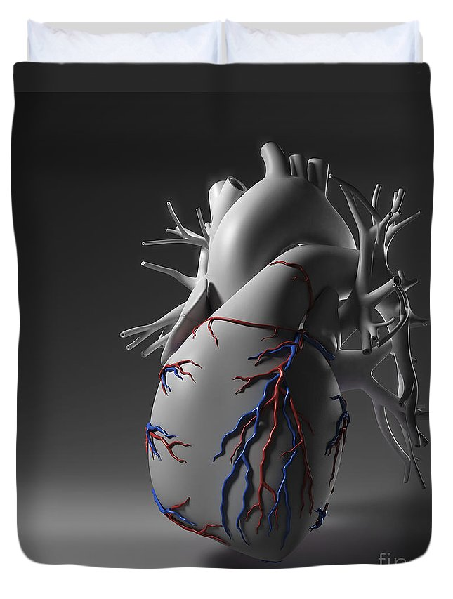 Digitally Generated Image Duvet Cover featuring the photograph Coronary Vessels by Science Picture Co