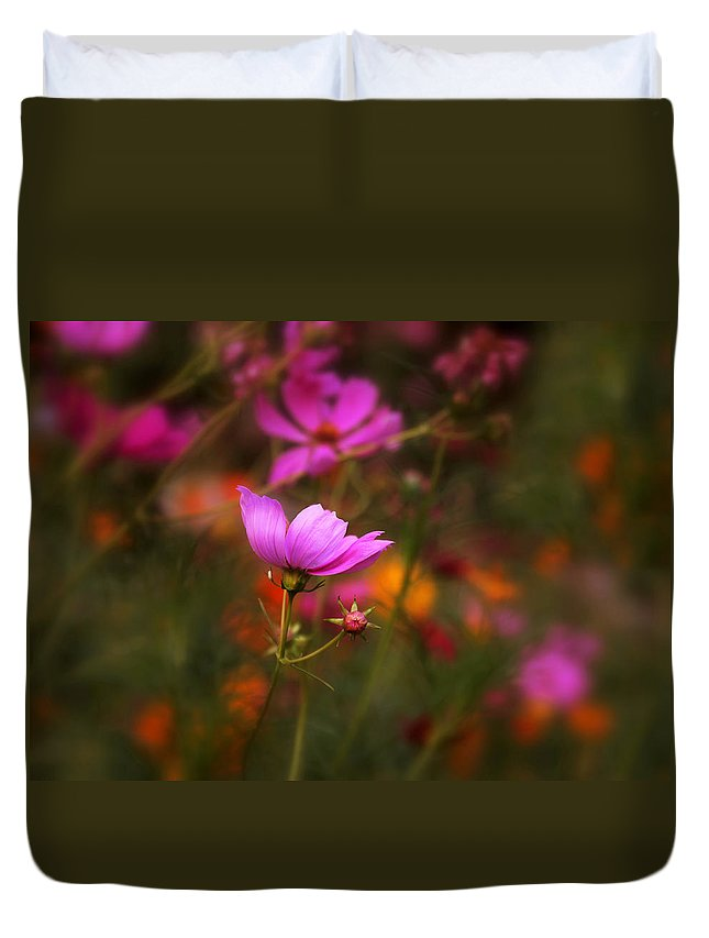 Flowers Duvet Cover featuring the photograph Cosmo by Jessica Jenney