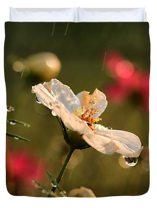 Background Duvet Cover featuring the photograph Cosmos In The Rain by Darren Fisher