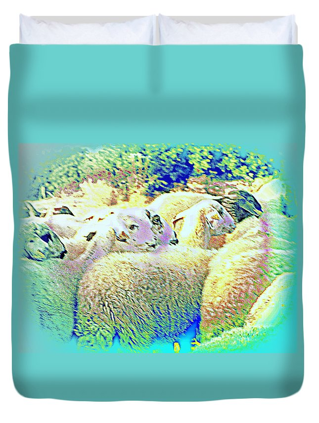 Sheep Duvet Cover featuring the photograph Counting The Sheep But Can't Sleep by Hilde Widerberg