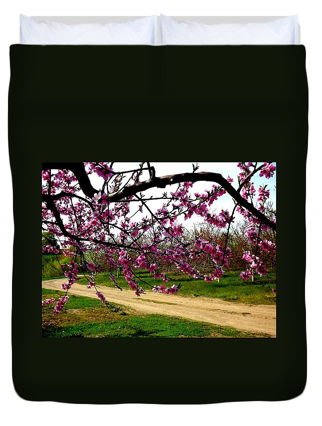 Path Duvet Cover featuring the photograph Country Road by Shelley Blair