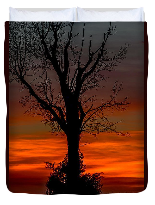 Lonely Tree In A Country Sunset Duvet Cover featuring the photograph Country Sunsets by Daren Johnson