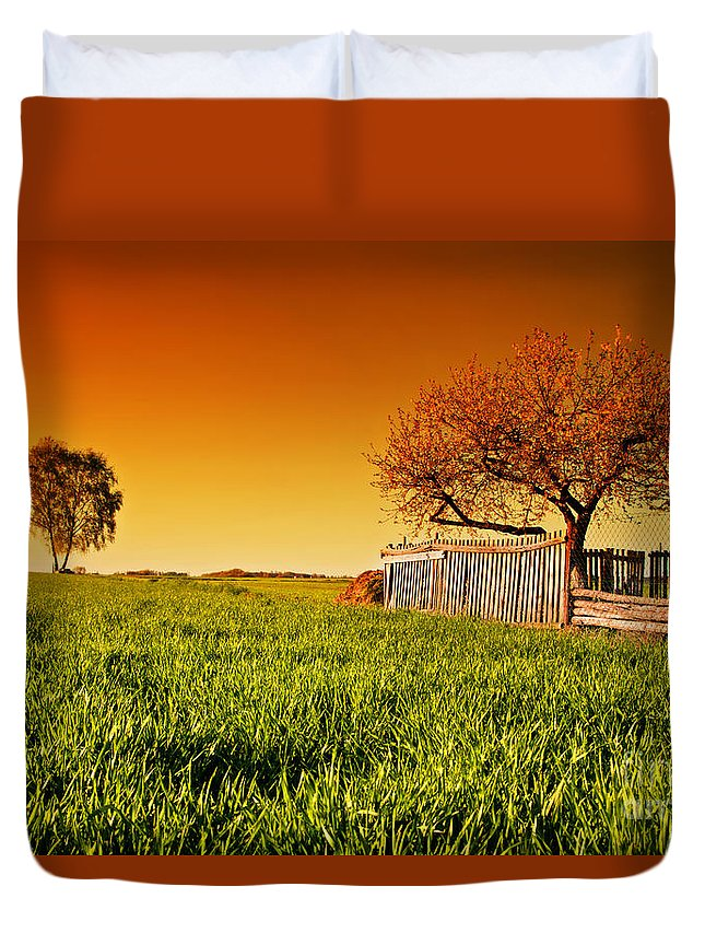 Field Duvet Cover featuring the photograph Countryside Orchard Landscape At Sunset. Spring Time by Michal Bednarek