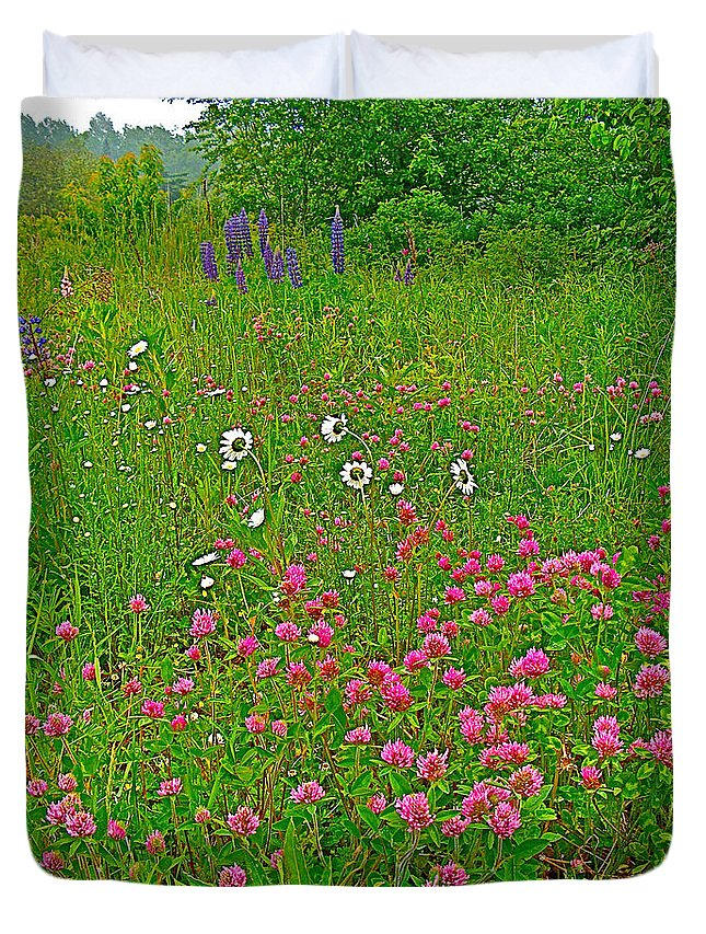 Cow Clover And Ox-eye Daisies On Campobello Island Duvet Cover featuring the photograph Cow Clover And Ox-eye Daisies On Campobello I by Ruth Hager