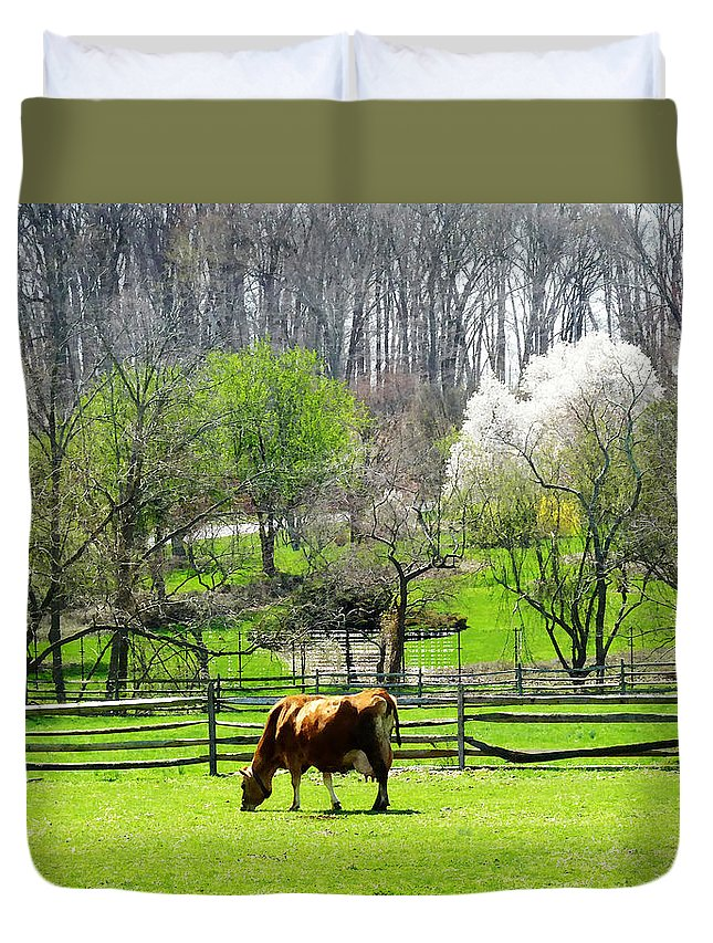 Cow Duvet Cover featuring the photograph Cow Grazing In Pasture In Spring by Susan Savad