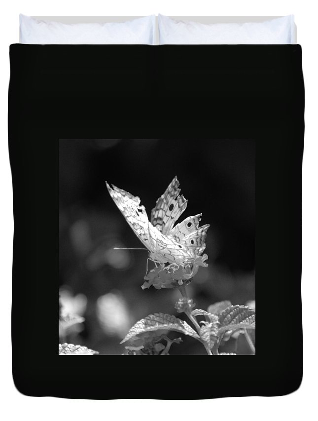 Lepidopterology Duvet Cover featuring the photograph Cracked Wing by Rob Hans