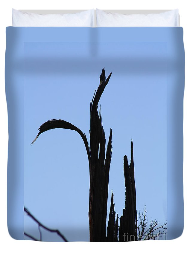 Crane Duvet Cover featuring the photograph Crane Wood by Brandi Maher