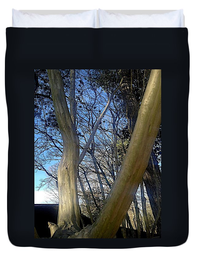 Crepe Myrtle Duvet Cover featuring the photograph Crape Myrtle by Joseph Yarbrough