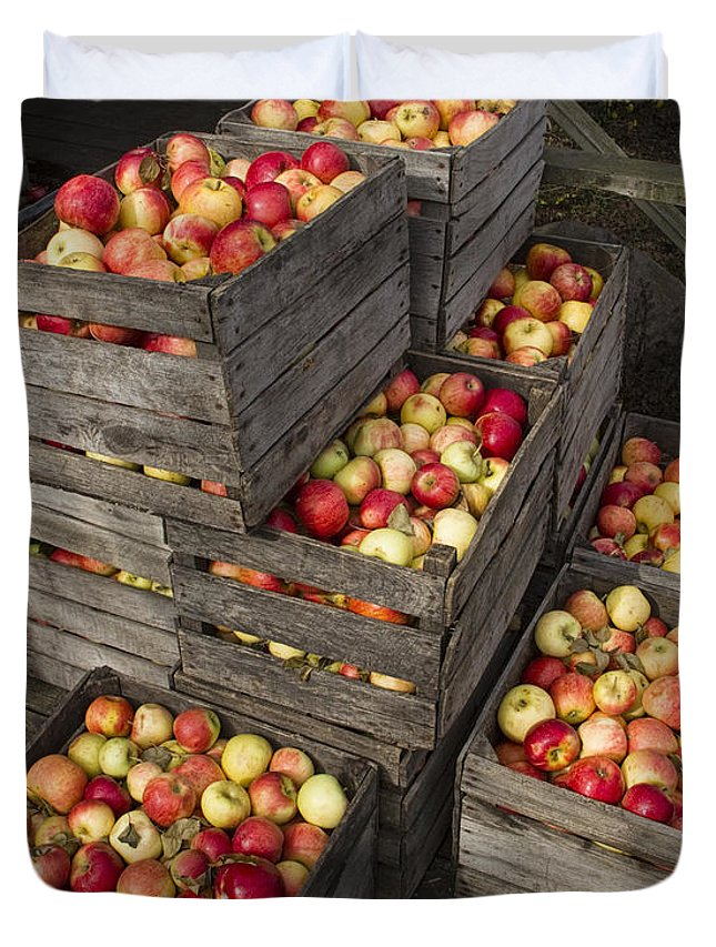 Art Duvet Cover featuring the photograph Crated Apples by Randall Nyhof