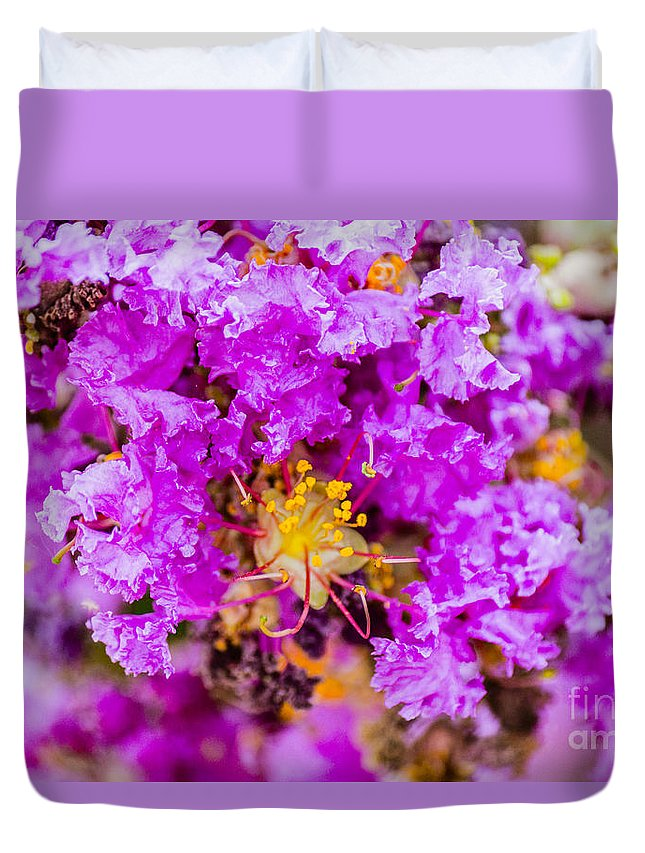 Flowers Duvet Cover featuring the photograph Crazy Purple by Cj Avery