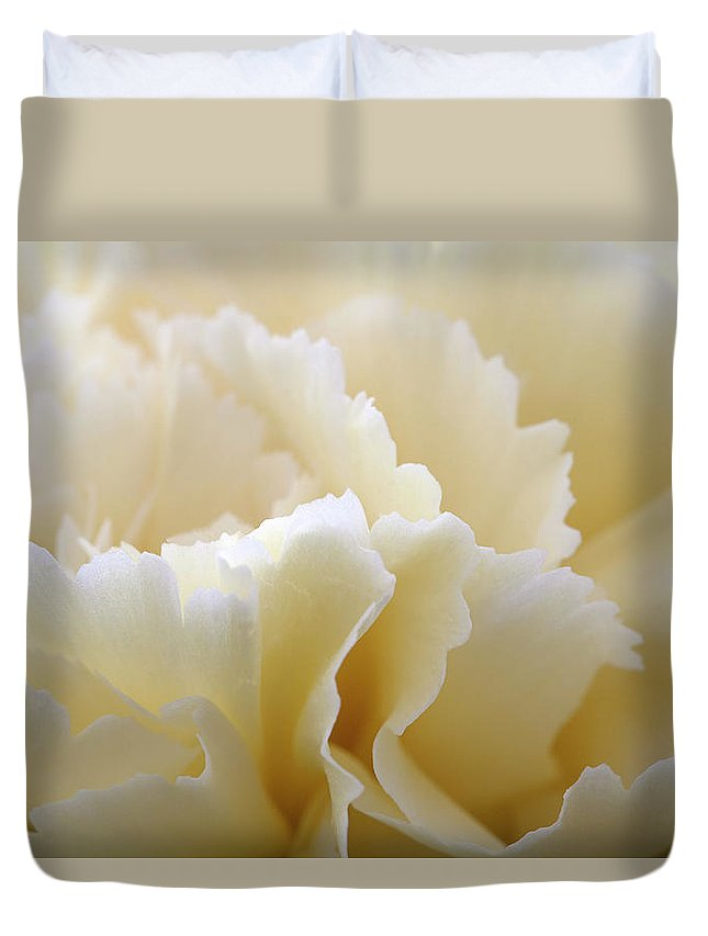 Netherlands Duvet Cover featuring the photograph Cream Coloured Carnation, Close-up by Roel Meijer