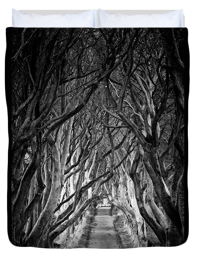 Dark Hedges Duvet Cover featuring the photograph Creepy Dark Hedges by Nigel R Bell