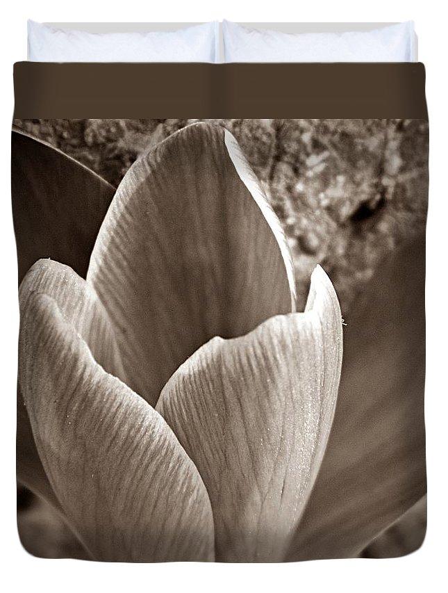 Crocus Duvet Cover featuring the photograph Crocus by Chris Berry
