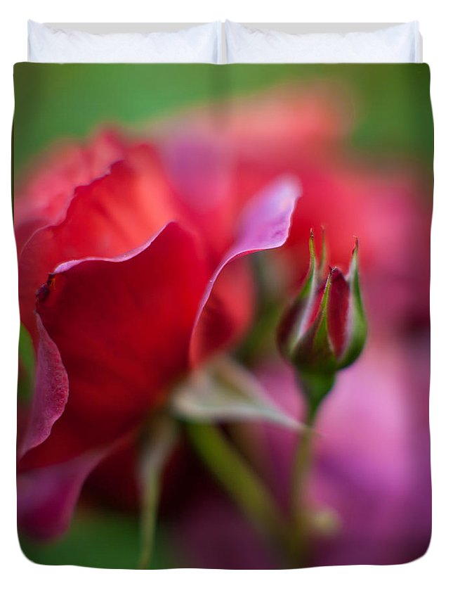 Flower Duvet Cover featuring the photograph Crossroads by Mike Reid