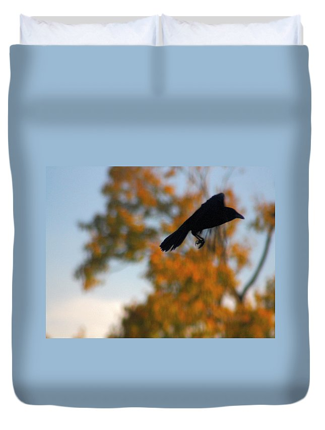 Crow In Fall Duvet Cover featuring the photograph Crow In Flight 3 by Gothicrow Images