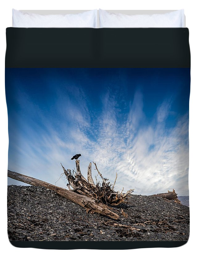 Beach Duvet Cover featuring the photograph Crow On Driftwood by Michele Cornelius