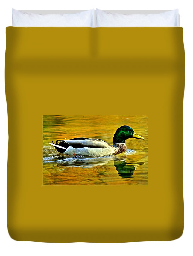 Mallard Duvet Cover featuring the photograph Cruisin by Frozen in Time Fine Art Photography
