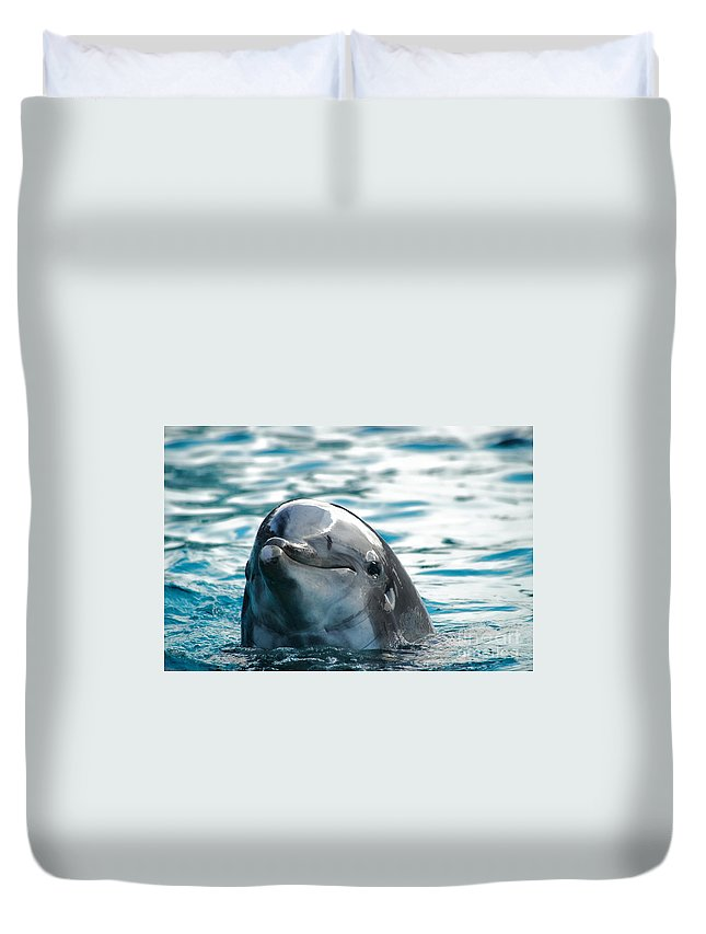 Dolphin Duvet Cover featuring the photograph Curious Dolphin by Mariola Bitner