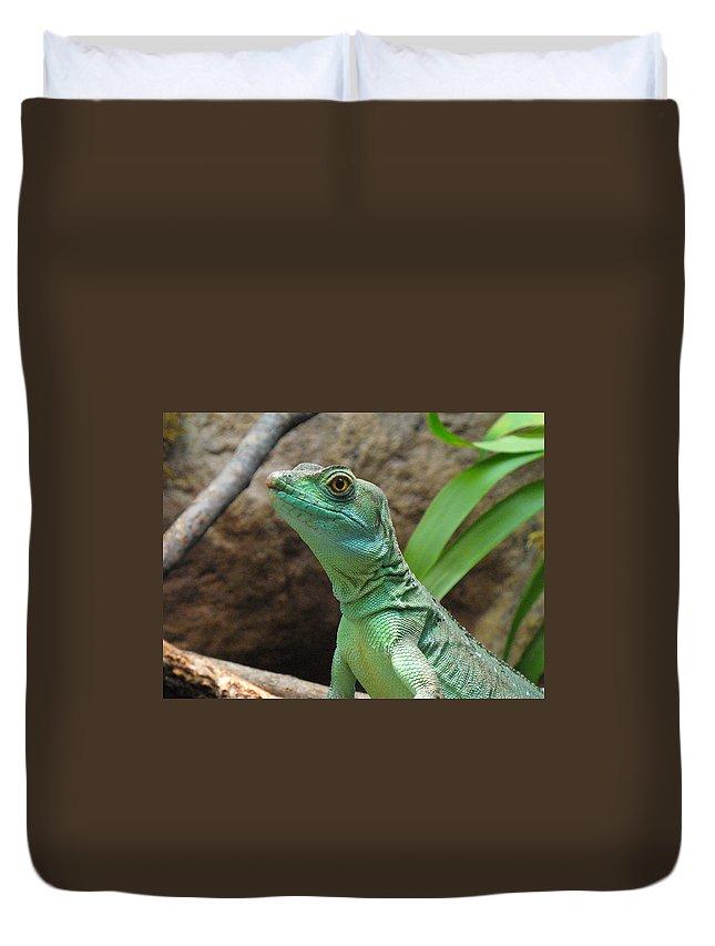 Lizard Duvet Cover featuring the photograph Curious Gaze by Lingfai Leung
