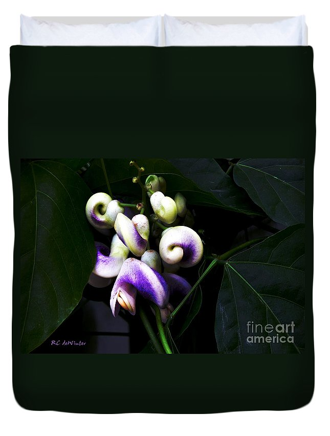 Snail Vine Duvet Cover featuring the photograph Curlicues by RC DeWinter
