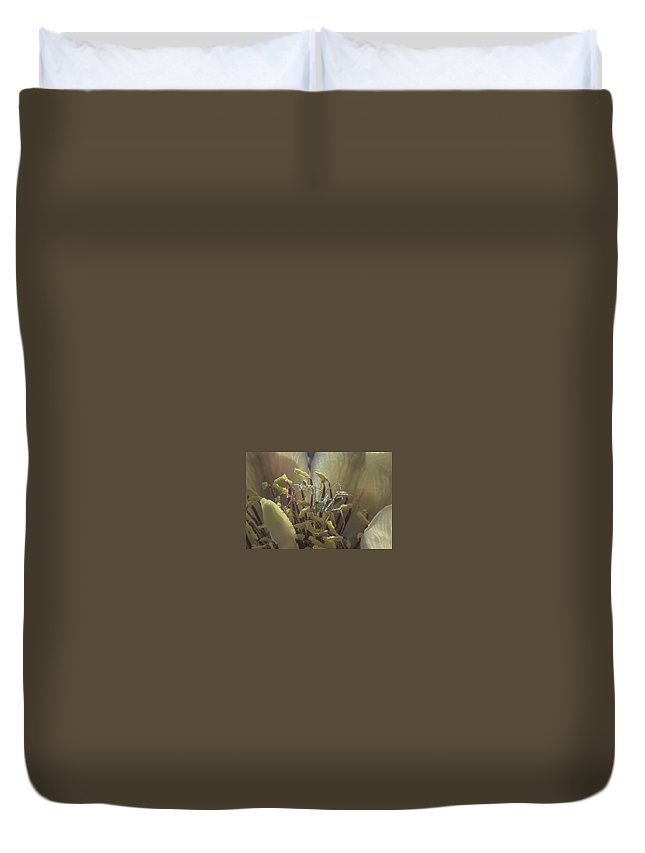 Cactus Duvet Cover featuring the photograph Current Resident by Lorraine Harrington