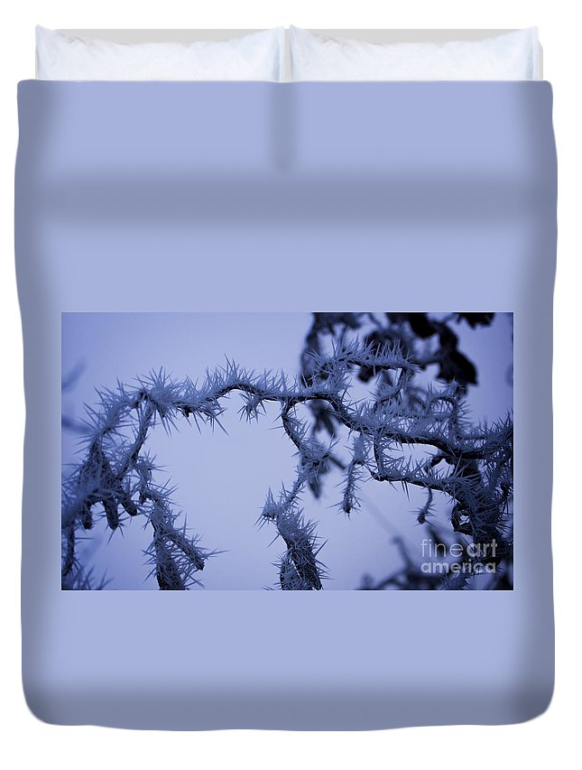 Background Duvet Cover featuring the photograph Curves And Spikes by Andrea Goodrich