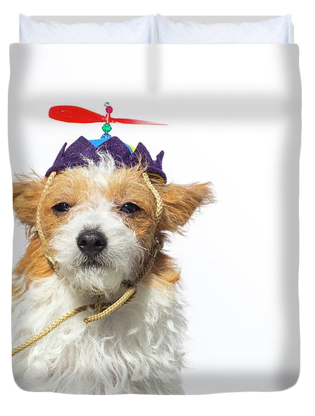 Pets Duvet Cover featuring the photograph Cute Dog With Propeller Hat - The by Amandafoundation.org