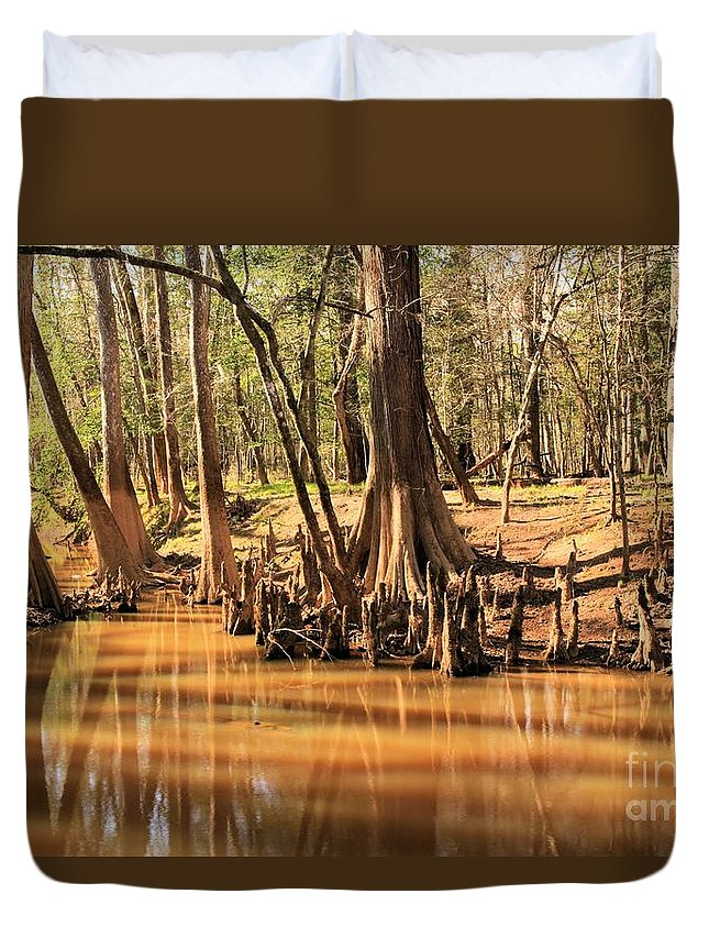 Congaree National Park Duvet Cover featuring the photograph Cypress Arch by Adam Jewell