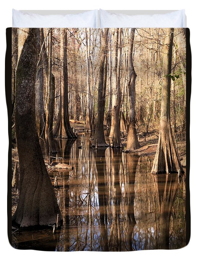 Congaree National Park Duvet Cover featuring the photograph Cypress Hall by Adam Jewell