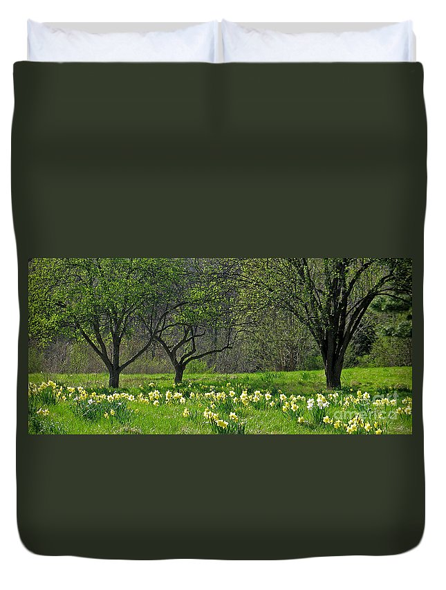 Spring Duvet Cover featuring the photograph Daffodil Meadow by Ann Horn