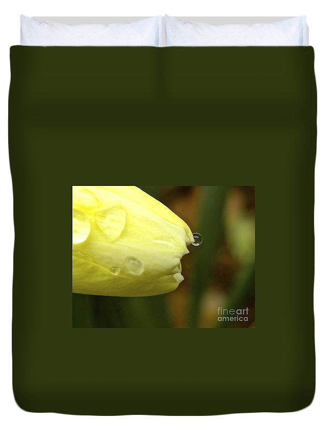 Daffodil Duvet Cover featuring the photograph Daffodil Reflection by Tisha Clinkenbeard